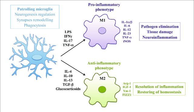 Figure by Nakagawa Y and Chiba K_Pharmaceuticals 2014, 7(12), 1028-1048; Review